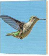 Blue Sky Hummingbird Wood Print