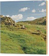 Blue Sky Of Holyrood Walk. Wood Print