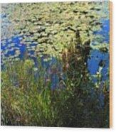 Blue Sky Pond Wood Print