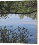 Blue Sky Reflection Wood Print