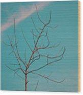 A Lovely Morning At Kerala Wood Print