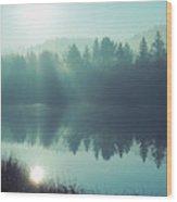 Blue Splendor Wood Print
