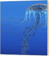 Blue Spotted Jellyfish Wood Print