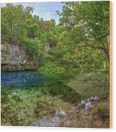 Blue Springs II Wood Print