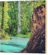 Blue Springs Wood Print