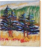 Blue Spruce Stand Wood Print