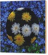 Blue Star Universe Wood Print
