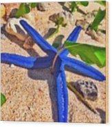 Blue Starfish Wood Print
