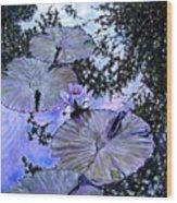 Blue Stillness Wood Print