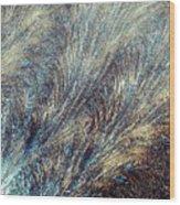 Blue Supernova - Hoarfrost Wood Print