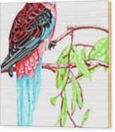 Blue Tail Parrot - Green Day Wood Print