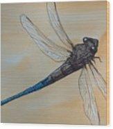 Blue Tale Wood Print