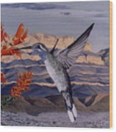 Blue Throated Hummingbird Wood Print