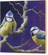 Blue Titmouse Wood Print