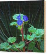 Blue Trio Wood Print
