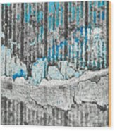 Blue Valley Wood Print