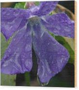 Blue Violet Raindrops Wood Print