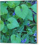 Blue Violets Wood Print