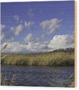 Blue Waters Of The Marsh Wood Print