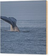 Blue Whale Tail Wood Print