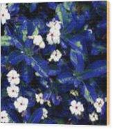 Blue White I Wood Print