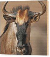 Blue Wildebeest Portrait Wood Print