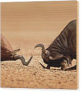 Blue Wildebeest Sparring With Red Hartebeest Wood Print