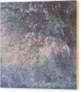Blue Willow. Monet Style Wood Print