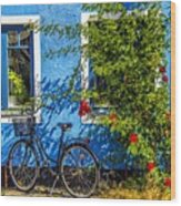 Blue Window With Bike Wood Print