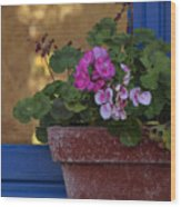 Blue Window With Geraniums Wood Print