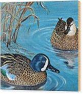 Blue-winged Teals Wood Print