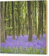 Bluebell Carpet Wood Print by Jane Rix