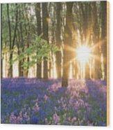 Bluebell Dawn Wood Print