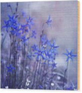 Bluebell Heaven Wood Print