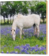Bluebell Lunch Wood Print