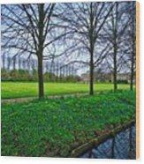 Bluebells In England Wood Print