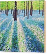 Bluebells In The Woodlands Wood Print
