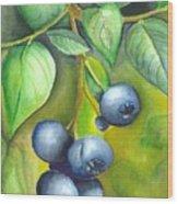 Blueberrries Wood Print by Angela Armano