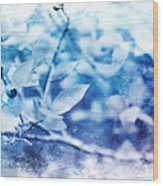 Blueberry Blues Wood Print