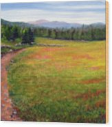 Blueberry Field 09 Wood Print