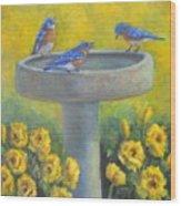 Bluebirds On Birdbath Wood Print