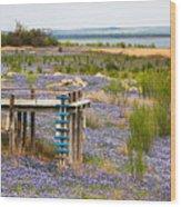 Bluebonnet Lakeshore Wood Print