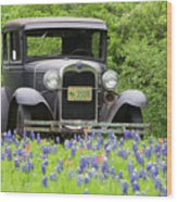 Bluebonnets And Fords Wood Print