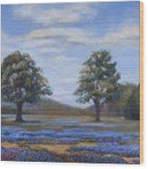 Bluebonnets In Texas Art Print By Susan Thacker