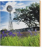 Bluebonnets With Windmill Wood Print