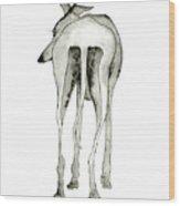 Bluedog Wood Print