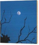 Bluemoon Wood Print
