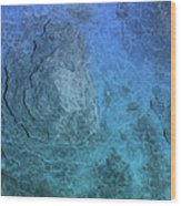 Bluepanel 16 Wood Print