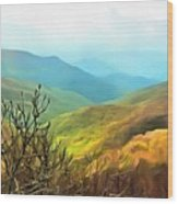 Blueridge - Spring Wood Print