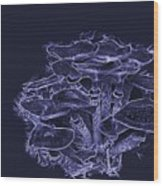 Blues And Dangeruos Wood Print